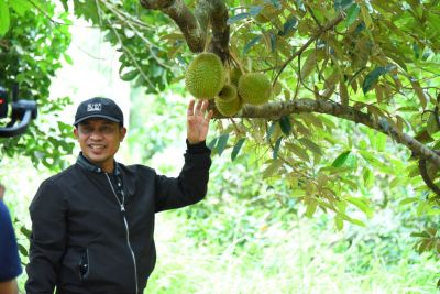 Wabup Bagus Santoso Gabung Warga Buat Lempuk Durian Legendaris Bengkalis